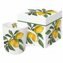 Coffret Mug Citrons